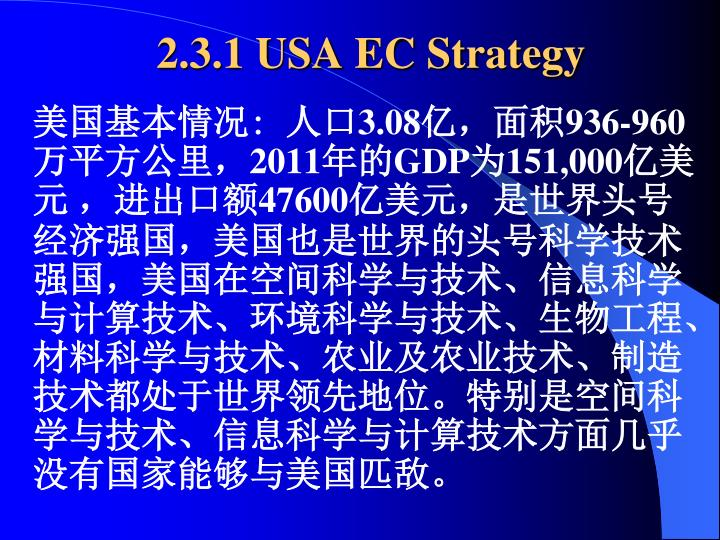 2.3.1 USA EC Strategy