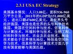 2 3 1 usa ec strategy