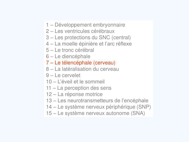 1 – Développement embryonnaire