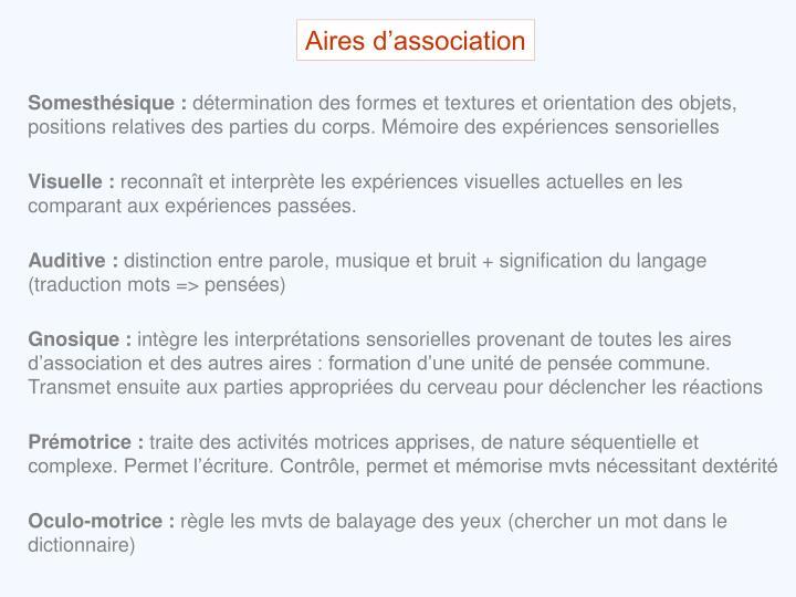 Aires d'association