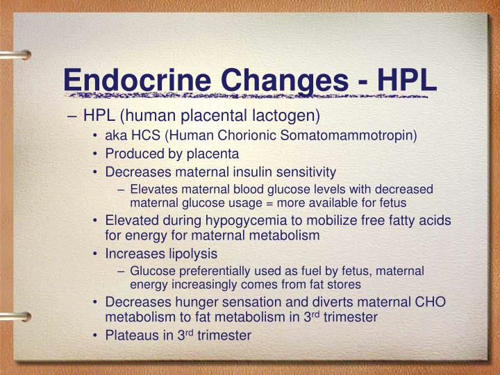 Endocrine Changes - HPL