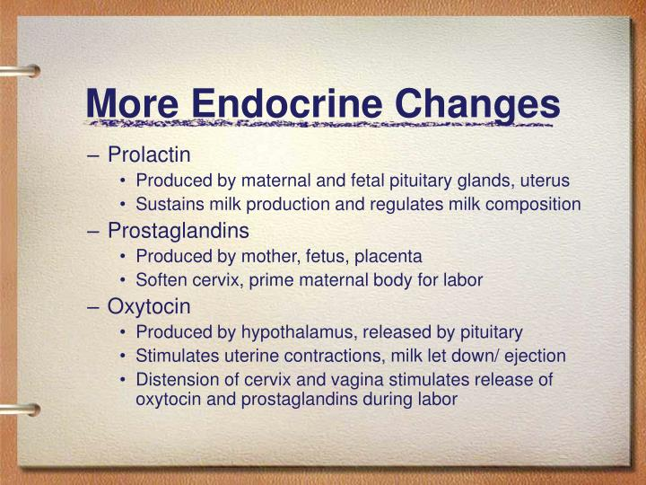 More Endocrine Changes