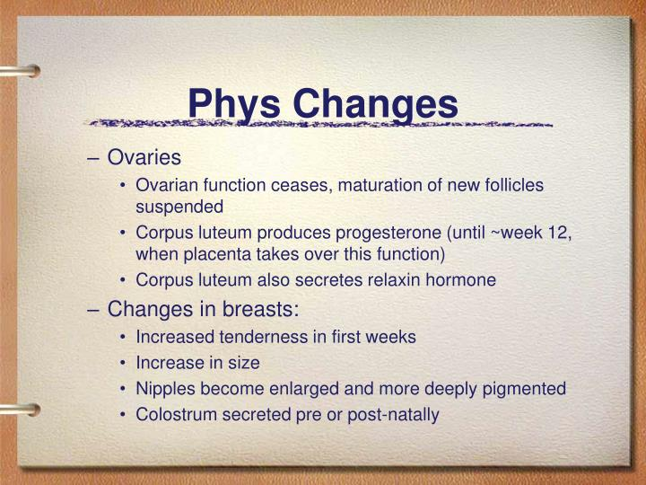 Phys Changes