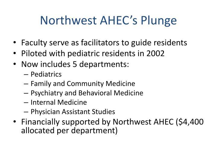 Northwest AHEC's Plunge