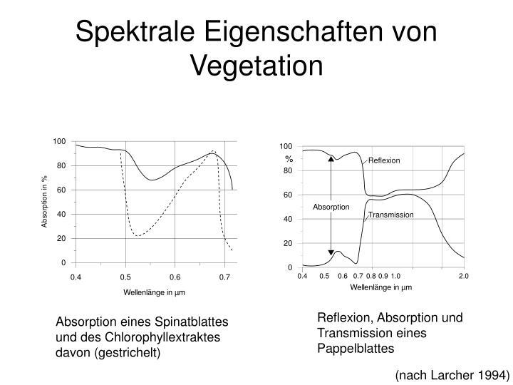 Spektrale Eigenschaften von Vegetation
