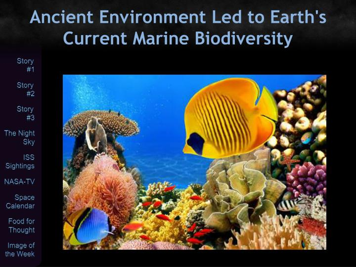 Ancient Environment Led to Earth's Current Marine Biodiversity