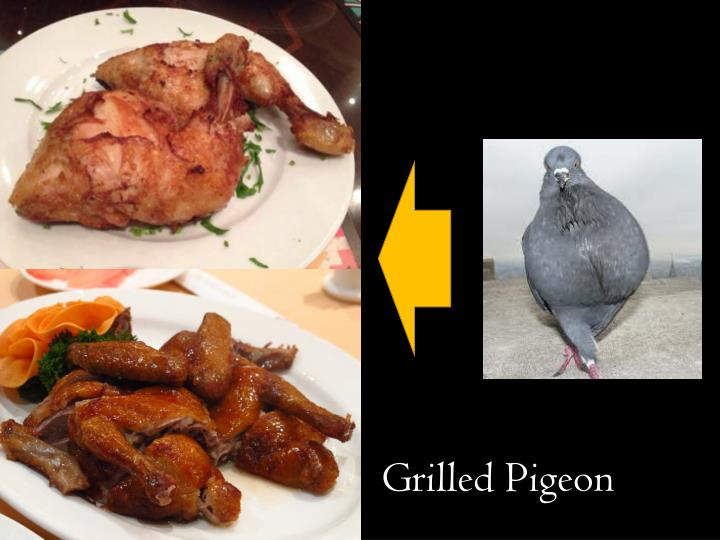 Grilled Pigeon