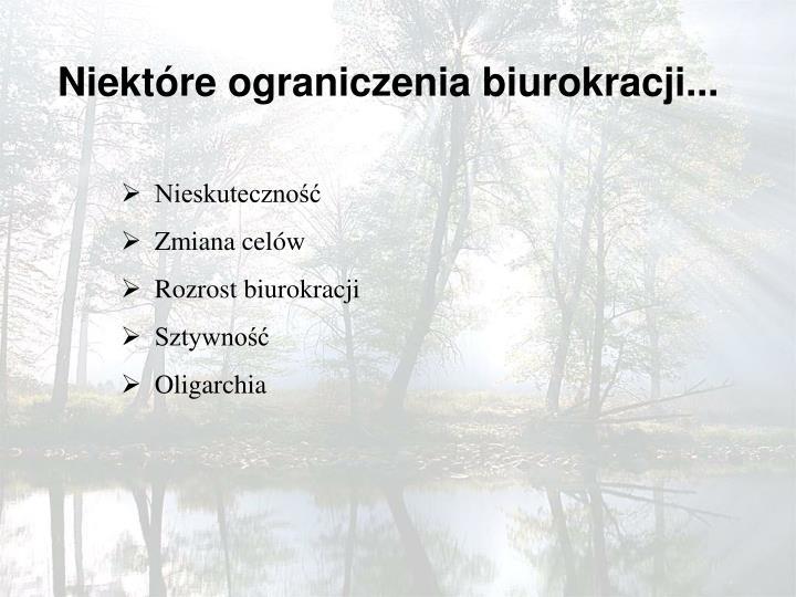 Niektóre ograniczenia biurokracji...