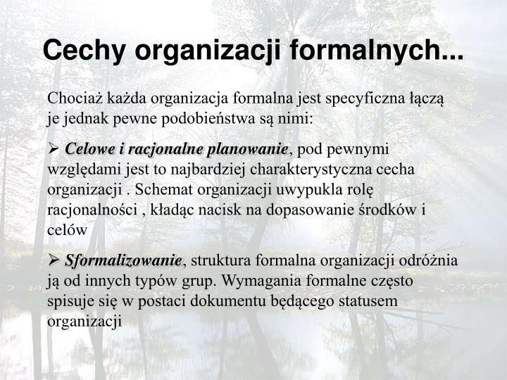 Cechy organizacji formalnych...