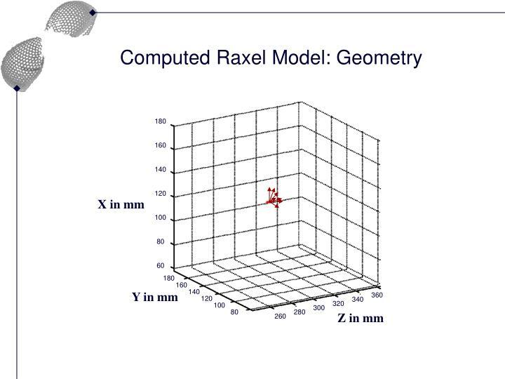 Computed Raxel Model: Geometry