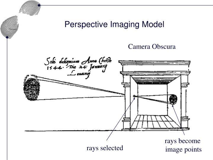 rays become