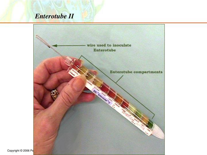 Enterotube II