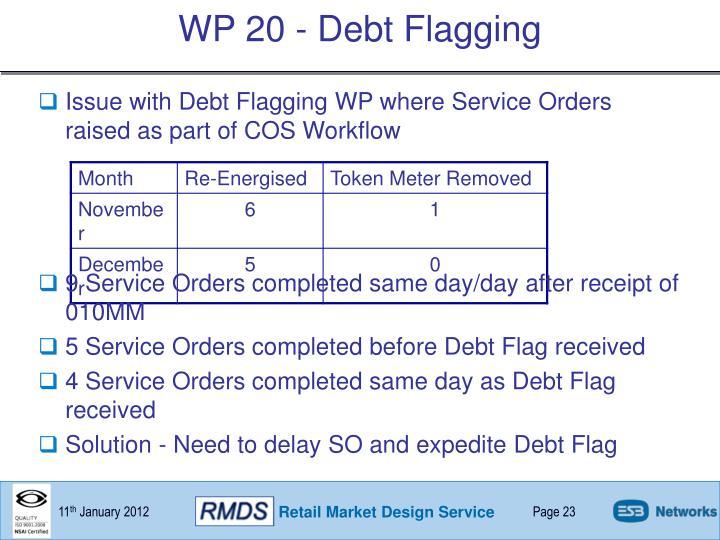 WP 20 - Debt Flagging
