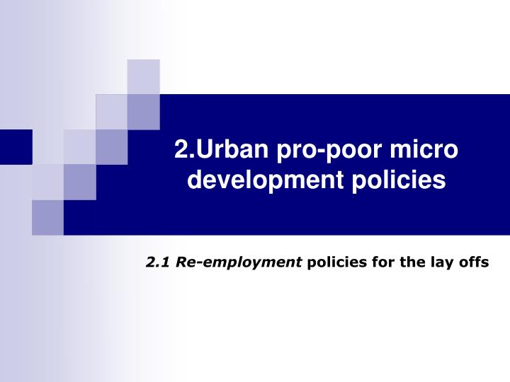 2.Urban pro-poor micro development policies