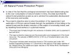 25 natural forest protection project