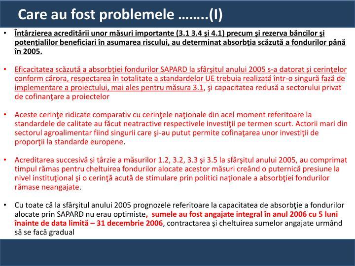 Care au fost problemele ……..(I)
