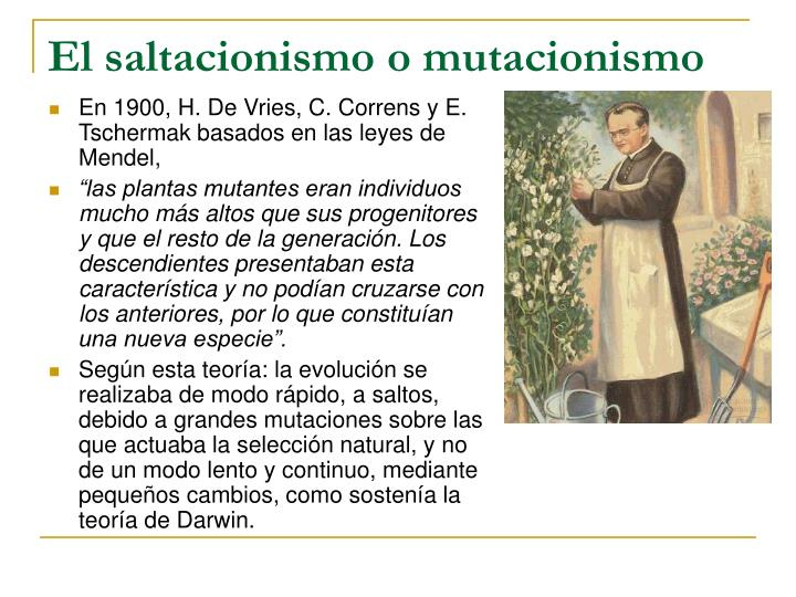 El saltacionismo o mutacionismo