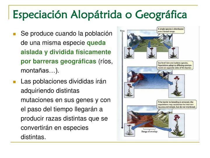 Especiación Alopátrida o Geográfica