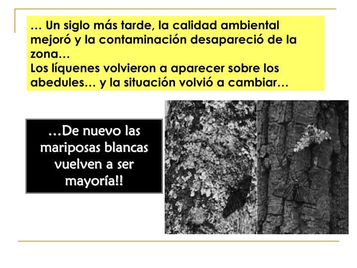 … Un siglo más tarde, la calidad ambiental mejoró y la contaminación desapareció de la zona…