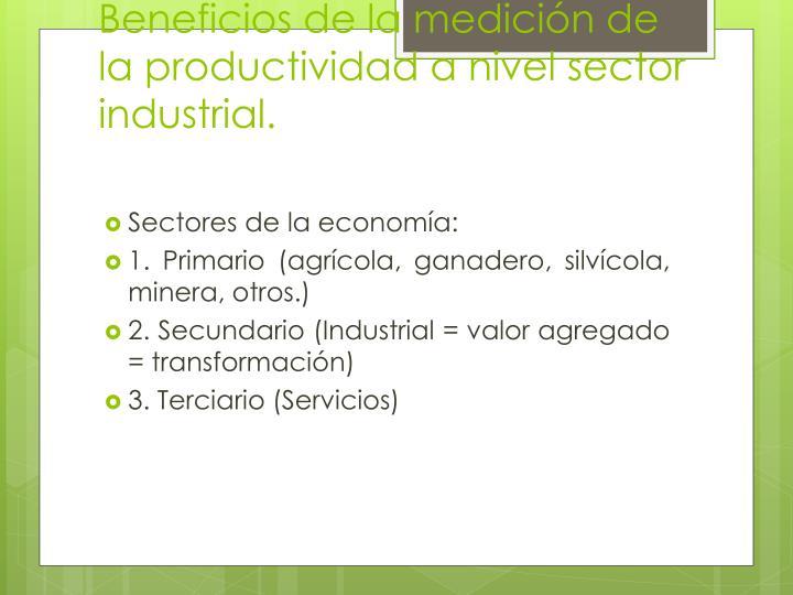 Beneficios de la medición de la productividad a nivel sector industrial.