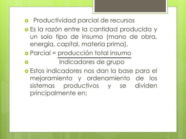 Productividad parcial de recursos