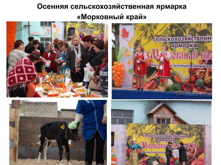 Осенняя сельскохозяйственная ярмарка «Морковный край»