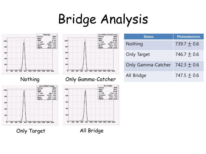 Bridge Analysis