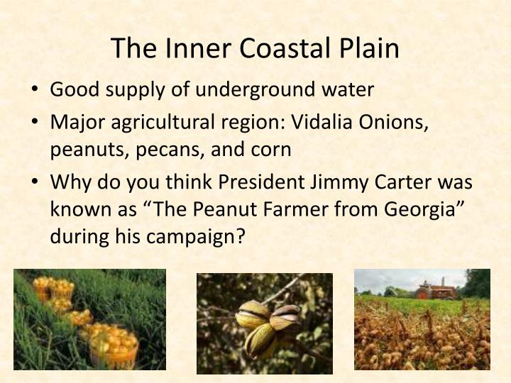 The Inner Coastal Plain