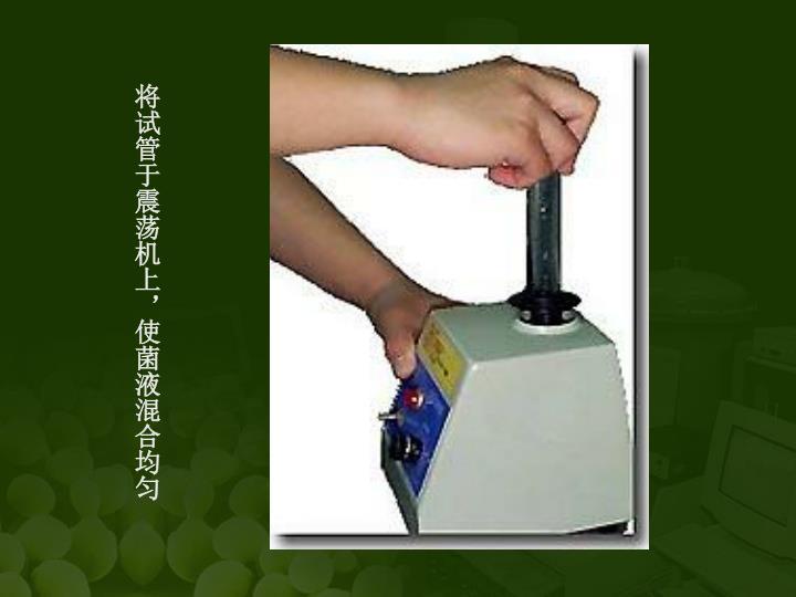 将试管于震荡机上,使菌液混合均匀