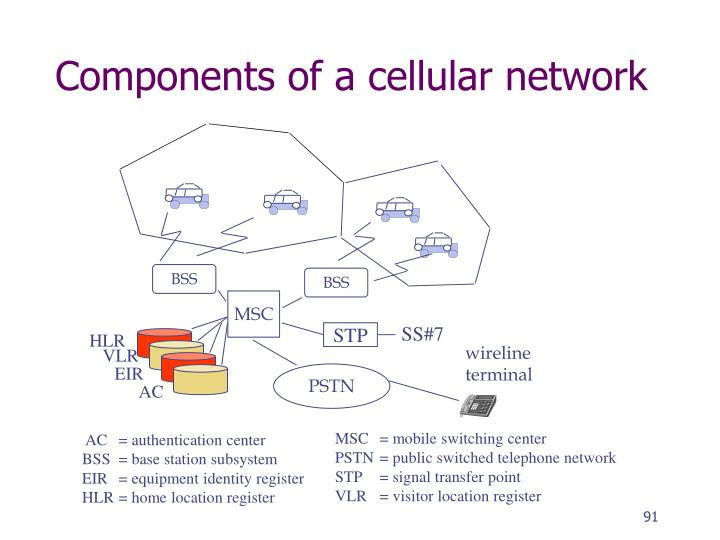 Components of a cellular network