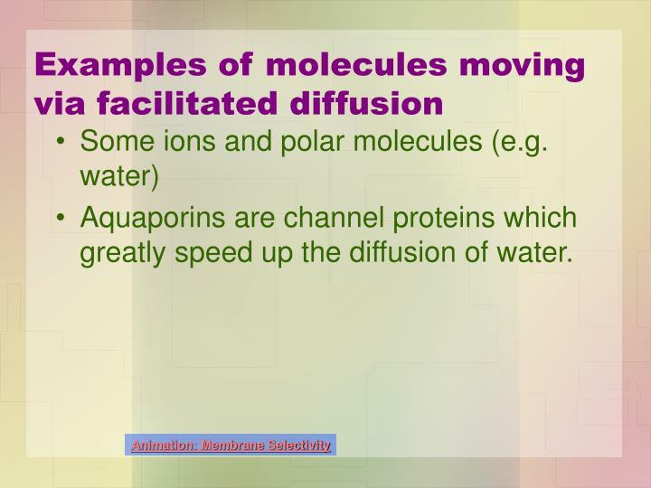 Examples of molecules moving via facilitated diffusion