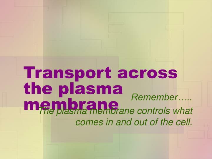 Transport across the plasma membrane