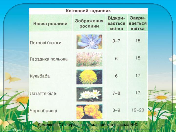 Демешева С.С. Черкаська загальноосвітня школа №8.