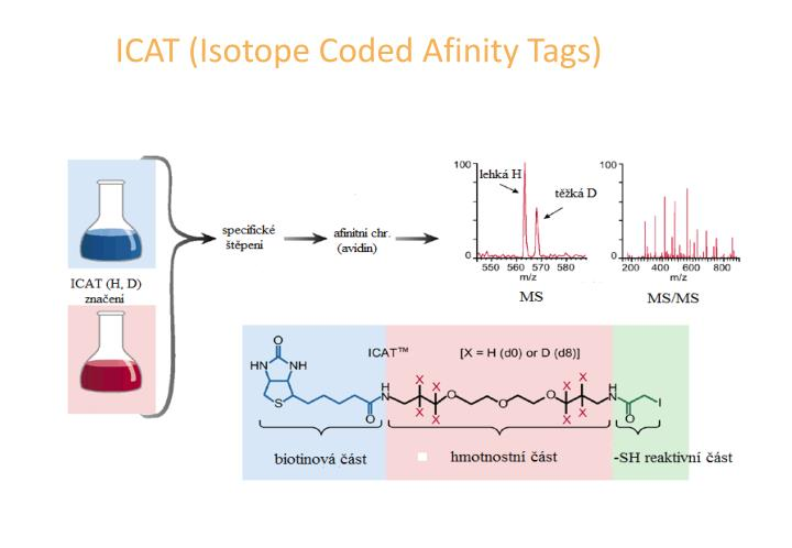 ICAT (Isotope Coded Afinity Tags)