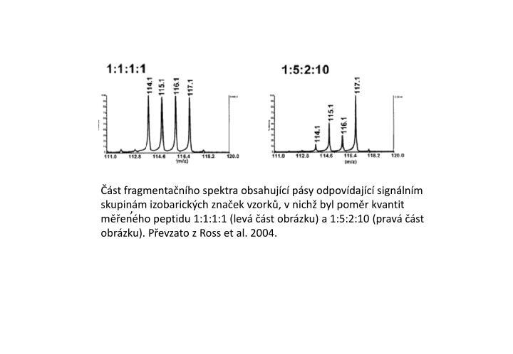 Část fragmentačního spektra obsahující pásy odpovídající signálním skupinám izobarických značek vzorků, vnichž byl poměr kvantit měřeného peptidu 1:1:1:1 (levá část obrázku) a 1:5:2:10 (pravá část obrázku). Převzato z Ross et al. 2004.