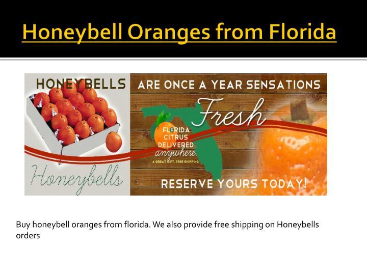 Honeybell Oranges from