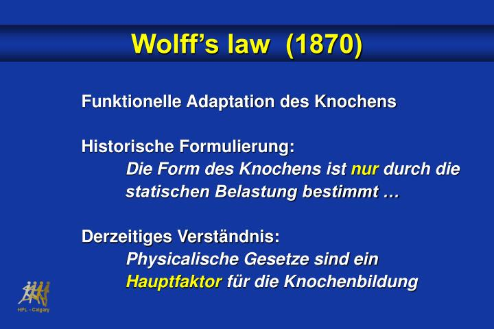 Wolff's law  (1870)
