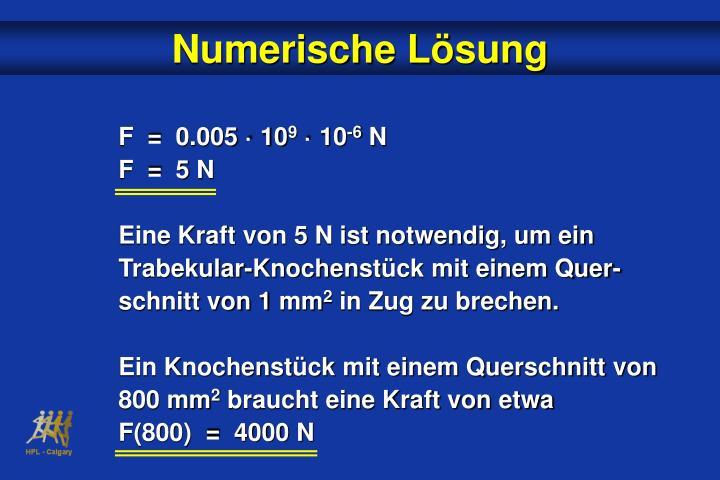 Numerische L