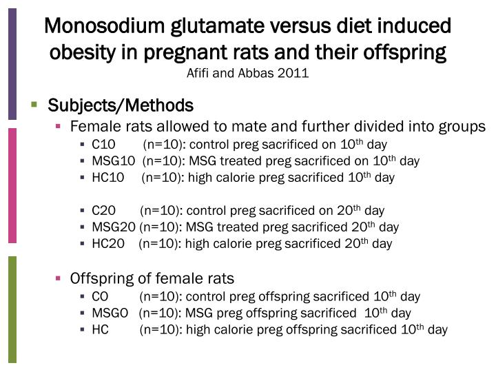 Monosodium glutamate versus diet induced obesity in pregnant rats and their offspring