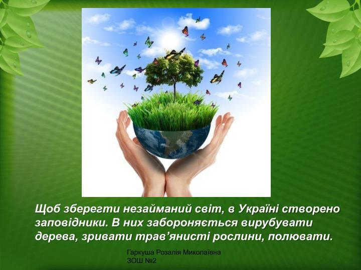 Щоб зберегти незайманий світ, в Україні створено заповідники. В них забороняється вирубувати дерева, зривати трав