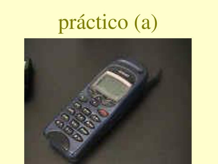 práctico (a)