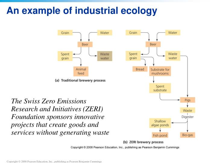 An example of industrial ecology