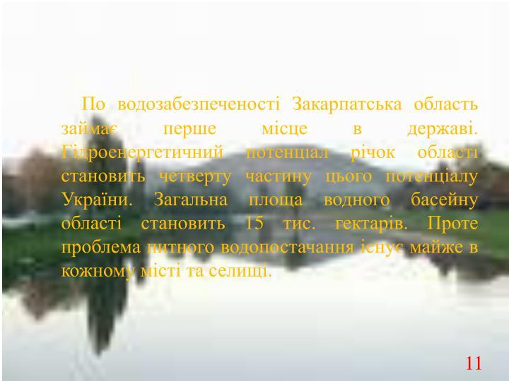 По водозабезпеченості Закарпатська область займає перше місце в державі. Гідроенергетичний потенціал річок області становить четверту частину цього потенціалу України. Загальна площа водного басейну області становить 15 тис. гектарів. Проте проблема питного водопостачання існує майже в кожному місті та селищі.