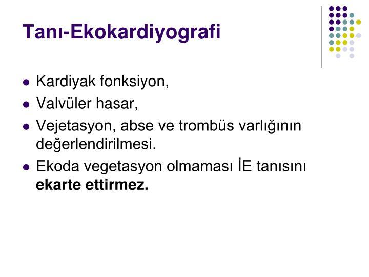 Tanı-Ekokardiyografi