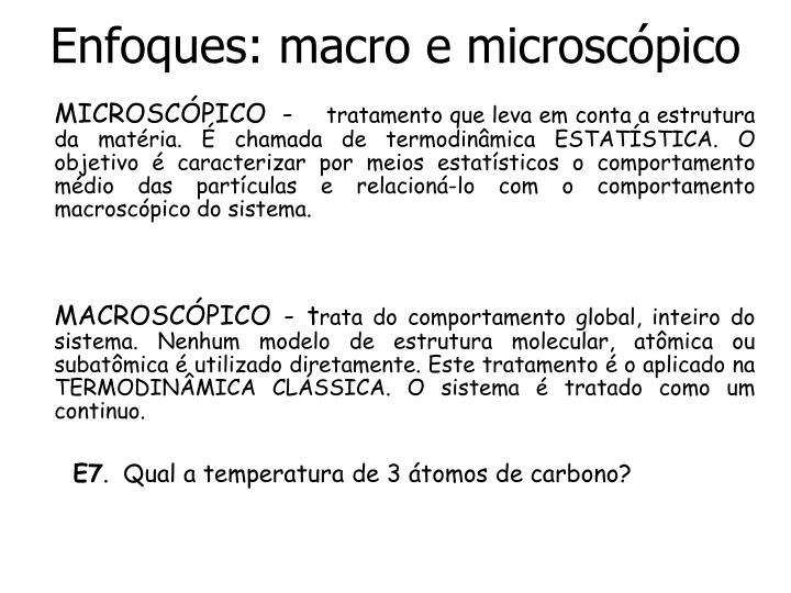 Enfoques: macro e microscópico