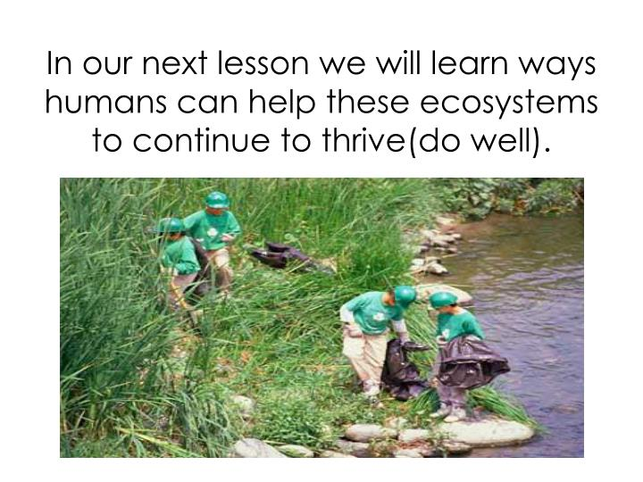 In our next lesson we will learn ways humans can help these ecosystems to continue to thrive(do well).