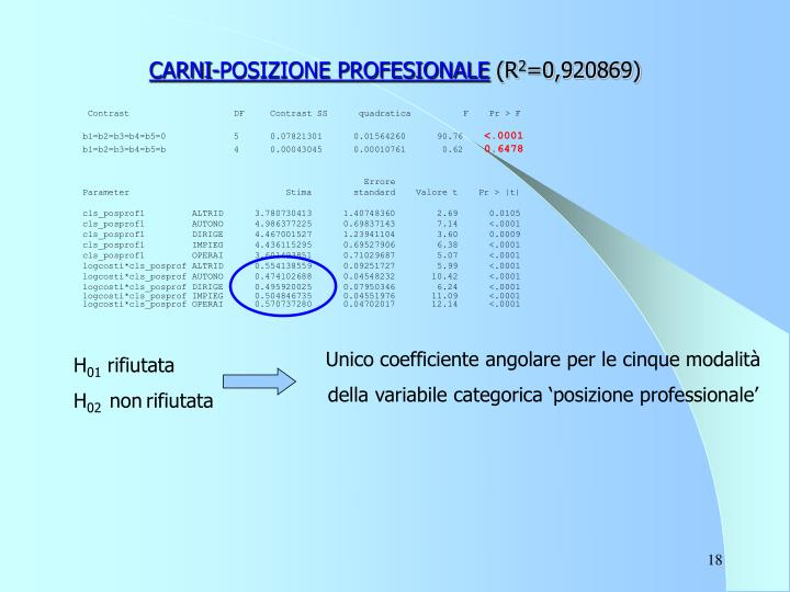 CARNI-POSIZIONE PROFESIONALE