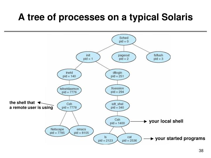 A tree of processes on a typical Solaris