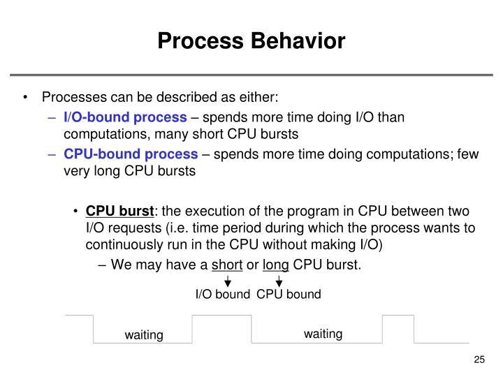 Process Behavior