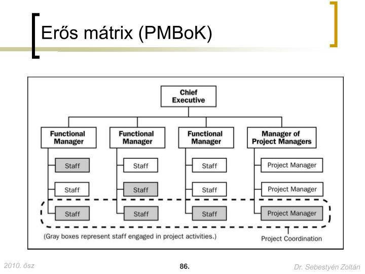 Erős mátrix (PMBoK)